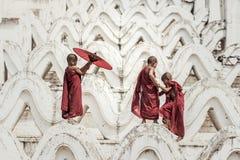 Buddistisk novis i tempel royaltyfria bilder