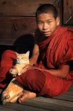 Buddistisk novis med katten Arkivbild