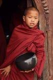 Buddistisk novis på en teakträkloster Arkivbild