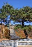 buddistisk staty arkivbild