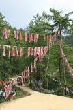 Buddistiska baner hängdes på träd i bygden nära Paro (Bhutan) Arkivfoton