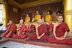Buddistiska munkar i meditation, Yangon, Myanmar Arkivbilder