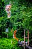 Buddistiska munkar som marscherar på träbron för att få tillbaka till churen Royaltyfri Fotografi