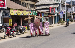 buddistiska nunnor Royaltyfri Foto