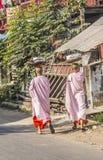 buddistiska nunnor Arkivbild