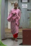 Buddistiska nunnor i Myanmar Arkivfoto