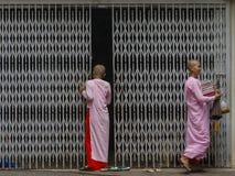 Buddistiska nunnor i Myanmar Arkivfoton