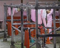 Buddistiska nunnor i Myanmar Arkivbild