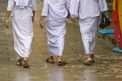 buddistiska religiösa gå kvinnor Arkivfoto