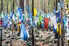 Buddistiska shamanic bönflaggor på rituella träd arkivfoton