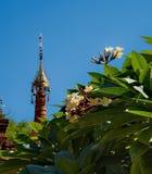 Buddistiska tempel för blommor av Bagan Royaltyfria Bilder