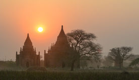 Buddistiska tempel på solnedgången i Bagan, Myanmar Arkivfoton