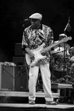 Buddy Guy royaltyfria bilder