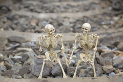 Buddy human skeleton on railway background. Sweet buddy human skeleton on railway background stock photos