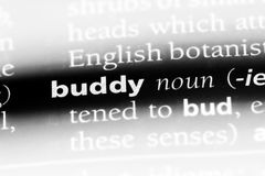 Buddy. Word in a dictionary.  concept stock photo