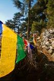 Buddyjska modlitwa zaznacza, Kora spacer, McLeod Ganj, India Zdjęcie Stock