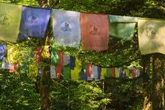 Buddyjska modlitwa zaznacza w lesie Tibet zdjęcia royalty free