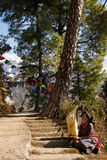 Buddyjska Tybetańska kobieta, Kora spacer, McLeod Ganj, India Obrazy Stock