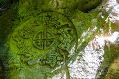 Buddyjski symbol przerastający z mech rzeźbił w skale w India obraz royalty free