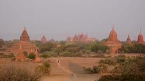 Buddyjskie świątynie przy Bagan królestwem, Myanmar zbiory wideo