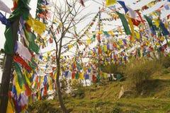 Buddyjskie modlitewne flaga Zdjęcie Royalty Free