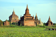 Buddyjskie pagody Obrazy Royalty Free