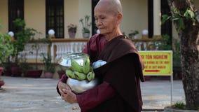 Buddyzm magdalenka w pagodzie w Hoi zdjęcie wideo