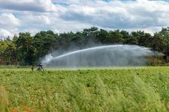 BUDEL, NETHERLANDS - JULY 31 2018: Farmers fight with water sprinklers against the drought on their land stock photos