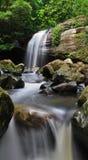 Buderim Falls Royalty Free Stock Photo