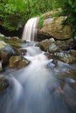 Buderim Falls Arkivfoto