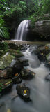 Buderim Falls. Flowing strongly after a long period of rain.  is a little gem hidden away amongst Buderim Forest Park on the Sunshine Coast Stock Image