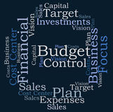 Budget control. Word cloud on white background Royalty Free Stock Photo