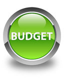 Budget glossy green round button Stock Photos