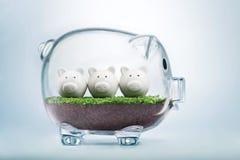 Budget- planläggning och tilldela pengarbegrepp royaltyfri bild