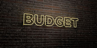 BUDGET -Realistic Neon Sign on Brick Wall background - 3D rendered royalty free stock image Stock Photos