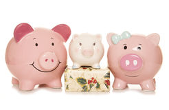 Budgeting for christmas piggy banks Stock Photos