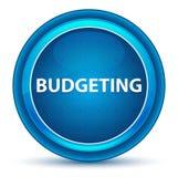 Budgeting Eyeball Blue Round Button vector illustration