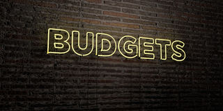 BUDGETS -Realistic Neon Sign on Brick Wall background - 3D rendered royalty free stock image Stock Images