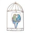 budgies cage dekorativt Arkivfoton
