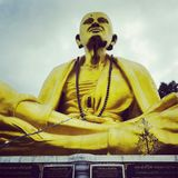 Budh upon north prov land great Royalty Free Stock Photography