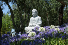 Budha Fotografie Stock Libere da Diritti