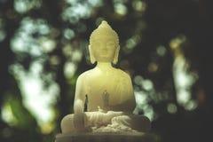 Budha Royalty-vrije Stock Fotografie