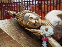 Budha Arkivbild