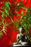 budha bambu Στοκ Εικόνες