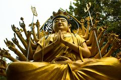 Budha 1000 ręka Fotografia Stock
