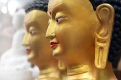 Budha statues Royalty Free Stock Image