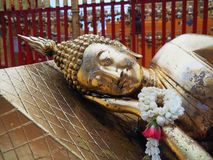 Budha. In temple Stock Photography