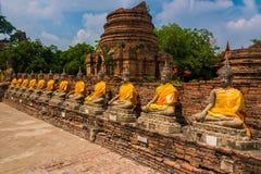Budhha chedis in Ayutthaya Royalty Free Stock Photos