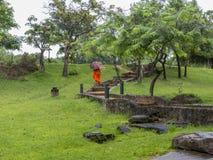 Budhist-Mönch in einem Stechpalmenweg Stockfoto