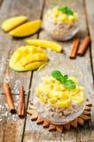 Budino di riso della cannella del mango Immagini Stock